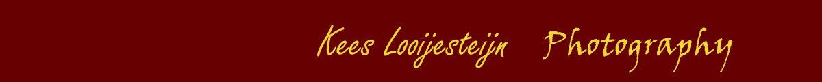 Looijesteijn Photography Logo